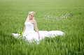Wedding Photography, Manhattan, Kansas City, Salina, Wichita, Kansas